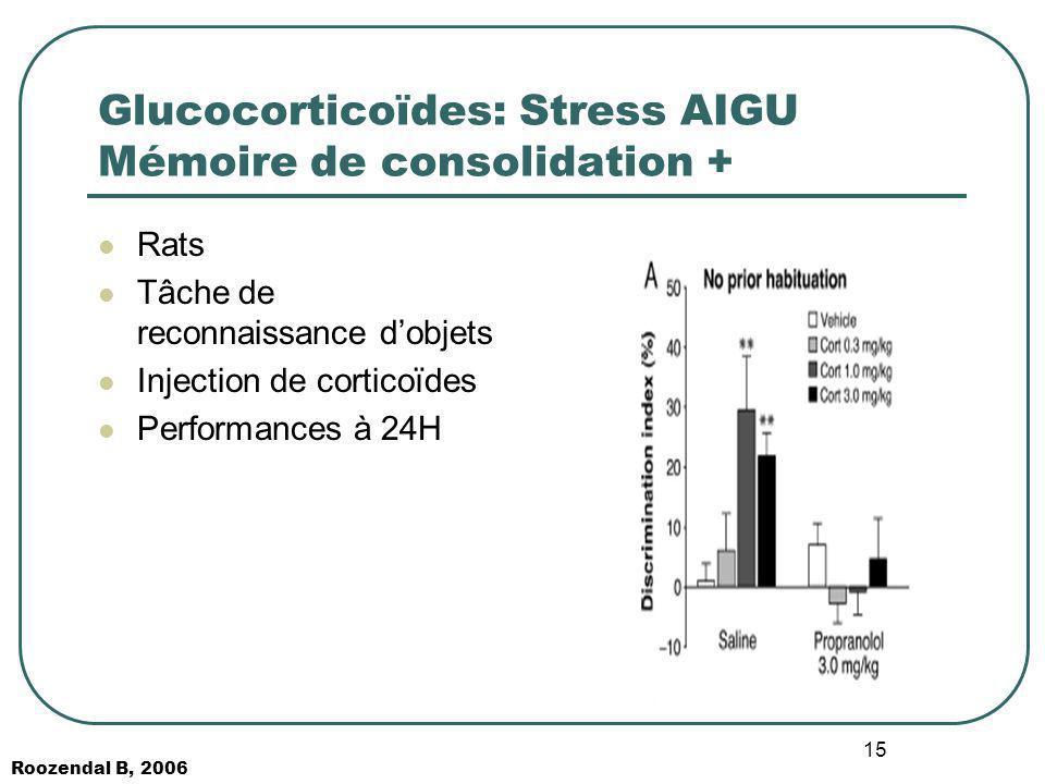 15 Glucocorticoïdes: Stress AIGU Mémoire de consolidation + Rats Tâche de reconnaissance dobjets Injection de corticoïdes Performances à 24H Roozendal