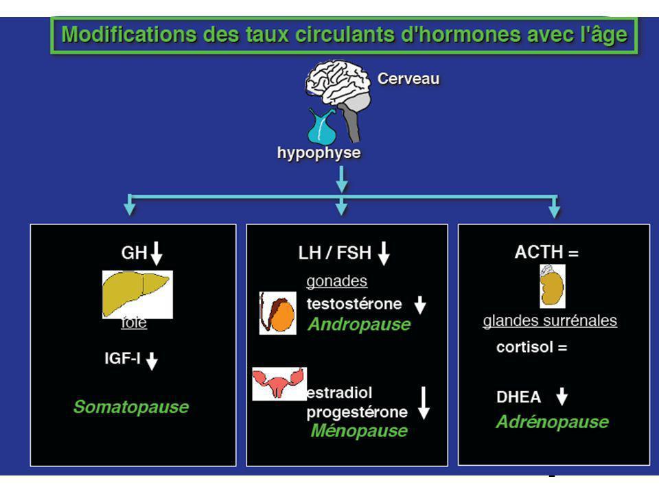 33 Études chez l humain Taux dIGF-1 plus bas quand MA (Murialdo et al, 2001), (Mustafa et al,1999), (Obermayer et al, 2005), (Tei et al, 2007) mais effectifs faibles Controversé ( Vardy ER, J Alzheimers Dis.