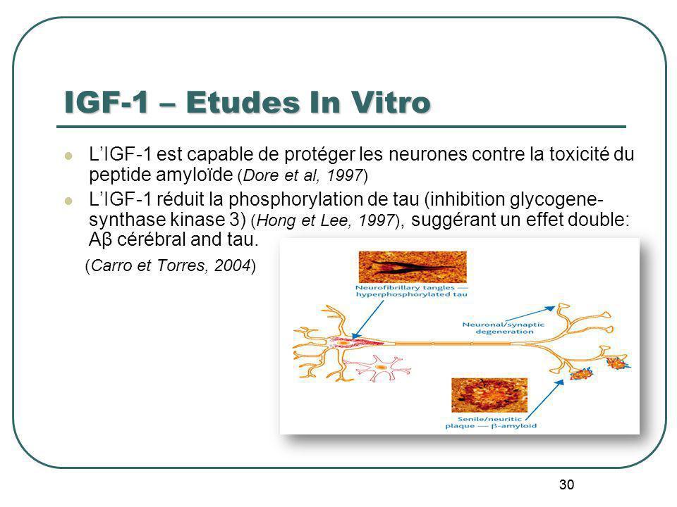 30 IGF-1 – Etudes In Vitro LIGF-1 est capable de protéger les neurones contre la toxicité du peptide amyloïde (Dore et al, 1997) LIGF-1 réduit la phos
