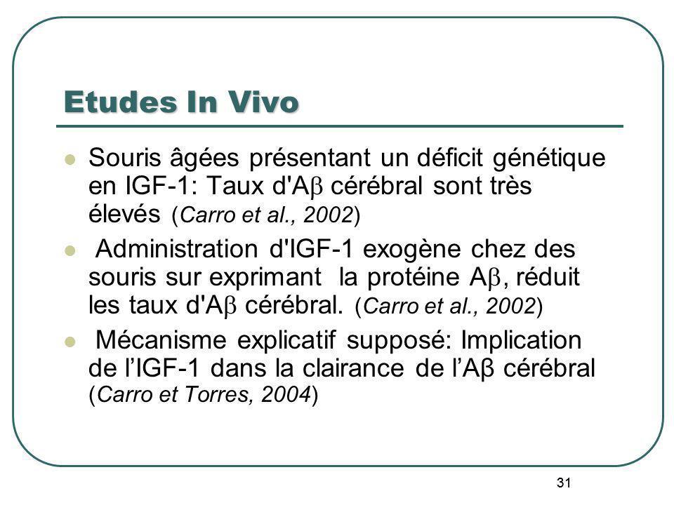 31 Etudes In Vivo Souris âgées présentant un déficit génétique en IGF-1: Taux d'A cérébral sont très élevés (Carro et al., 2002) Administration d'IGF-
