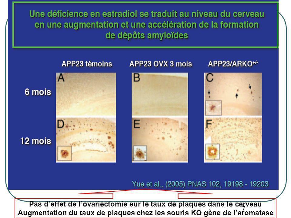 7 Pas deffet de lovariectomie sur le taux de plaques dans le cerveau Augmentation du taux de plaques chez les souris KO gène de laromatase