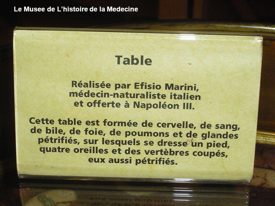 Le Musee de Lhistoire de la Medecine