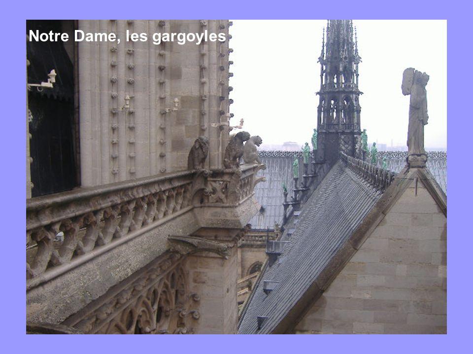 Notre Dame, les gargoyles