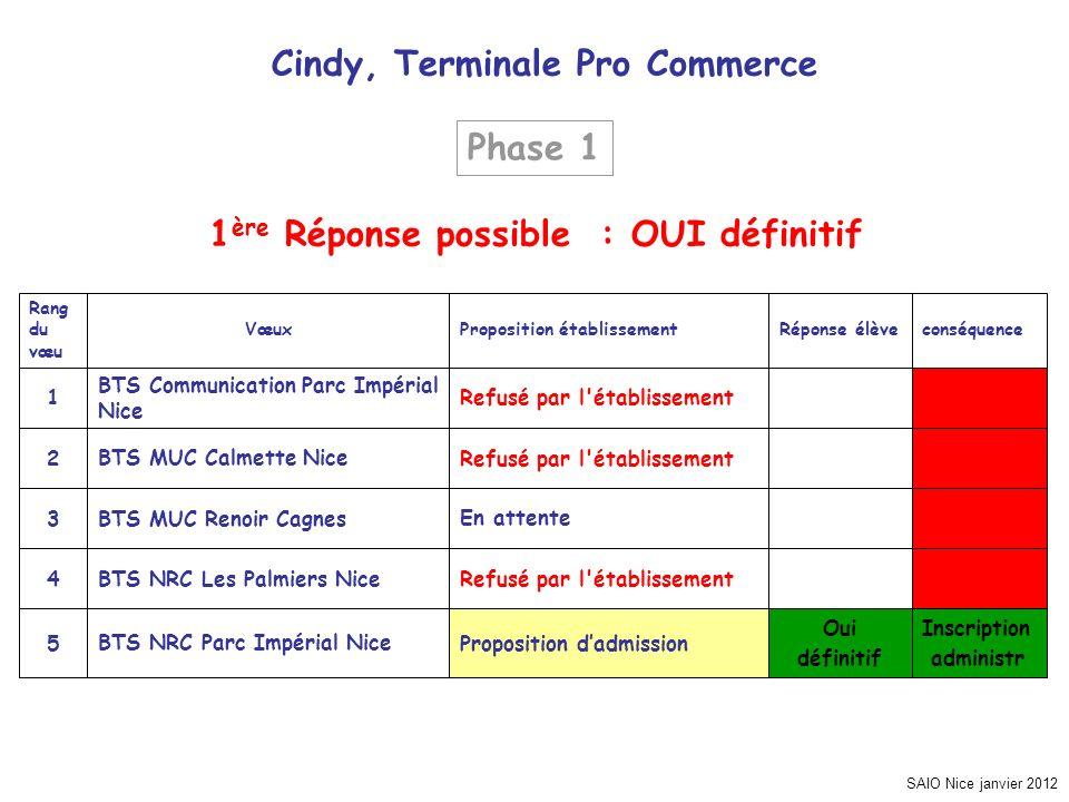 SAIO Nice janvier 2012 Cindy, Terminale Pro Commerce Inscription administr Oui définitif Proposition dadmissionBTS NRC Parc Impérial Nice5 Refusé par