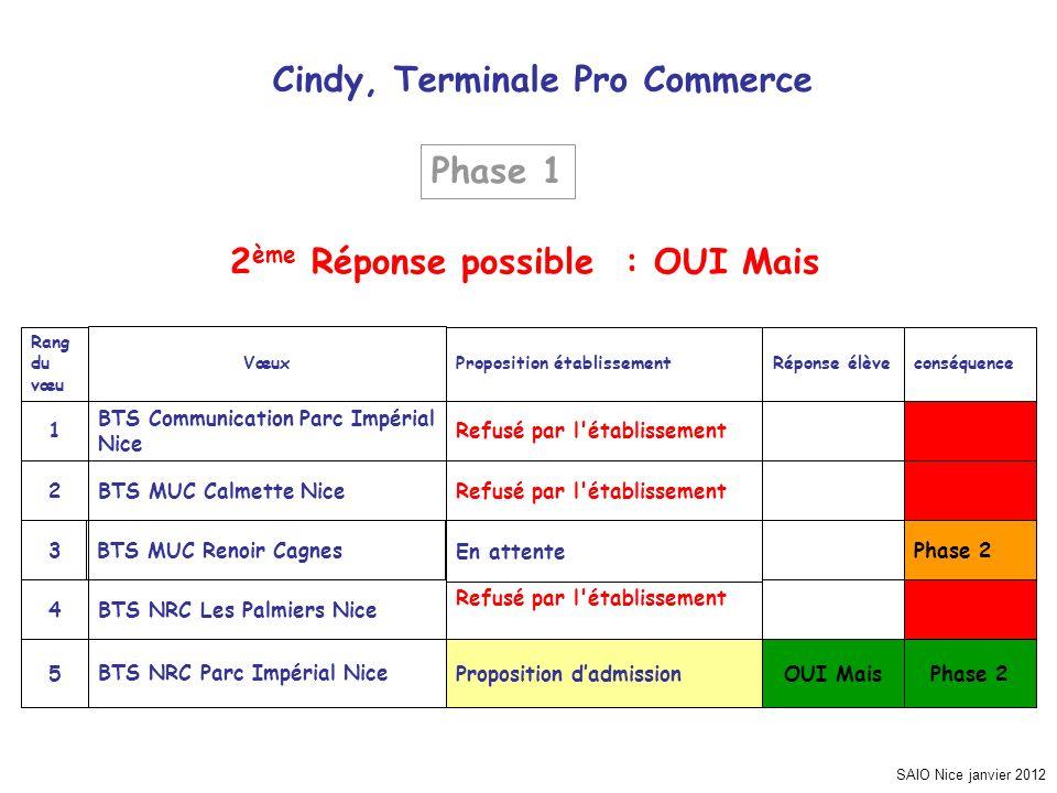 SAIO Nice janvier 2012 Cindy, Terminale Pro Commerce Phase 2 OUI MaisProposition dadmissionBTS NRC Parc Impérial Nice5 Refusé par l'établissement BTS