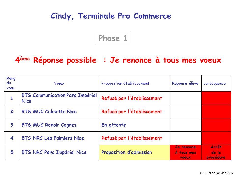 SAIO Nice janvier 2012 Cindy, Terminale Pro Commerce Arrêt de la procédure Je renonce À tous mes voeux Proposition dadmissionBTS NRC Parc Impérial Nic