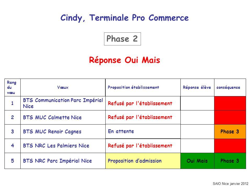 SAIO Nice janvier 2012 Cindy, Terminale Pro Commerce Phase 3 Oui MaisProposition dadmissionBTS NRC Parc Impérial Nice5 Refusé par l'établissementBTS N