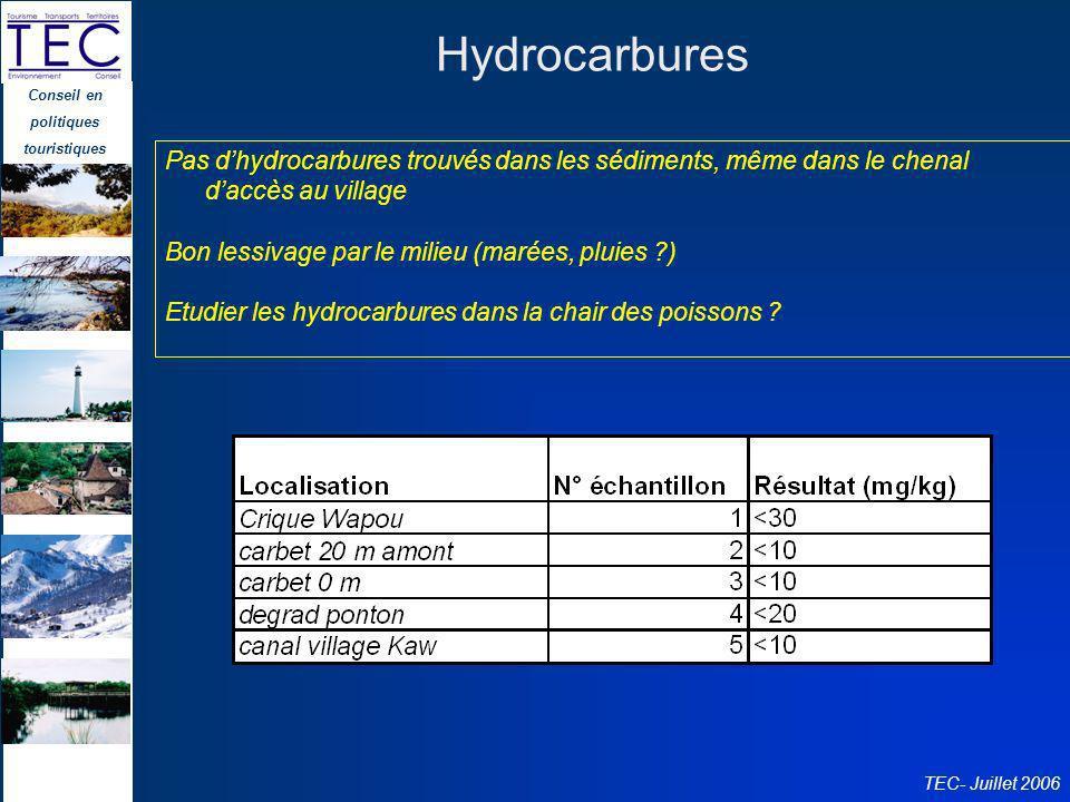 Conseil en politiques touristiques TEC- Juillet 2006 Hydrocarbures Pas dhydrocarbures trouvés dans les sédiments, même dans le chenal daccès au villag