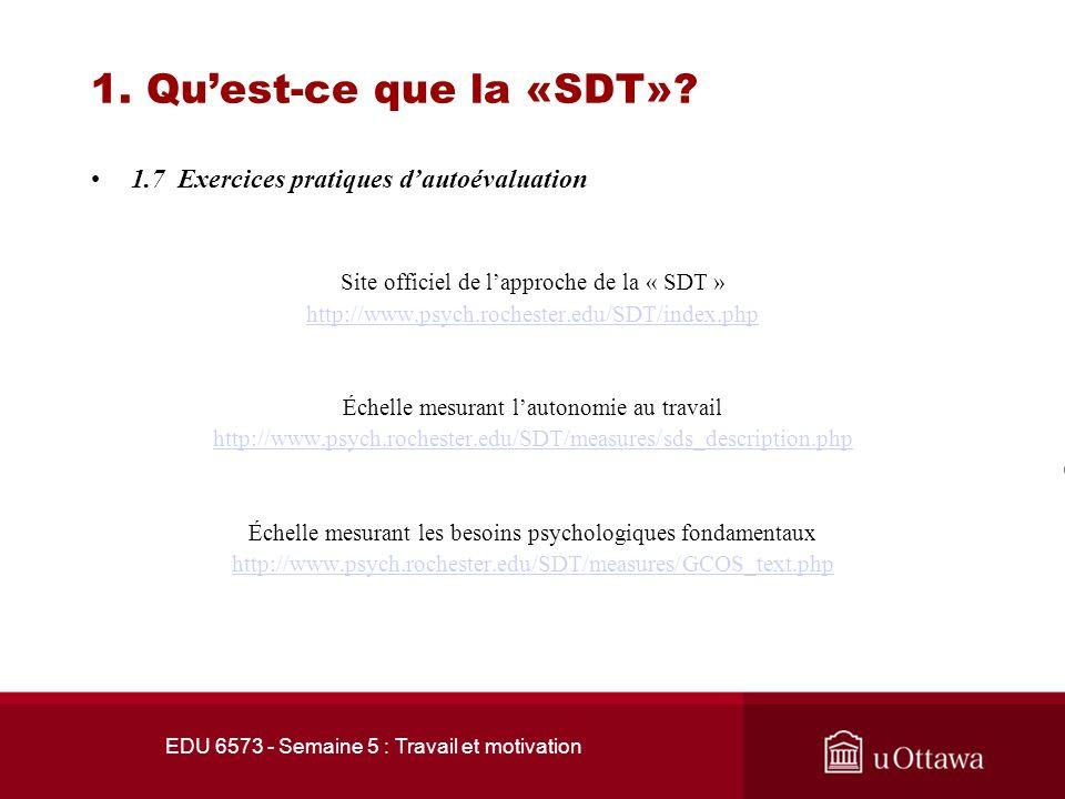 EDU 6573 - Semaine 5 : Travail et motivation 1. Quest-ce que la «SDT»? 1.6 Le besoin dappartenance Le besoin dappartenance est aussi essentiel. Il sag