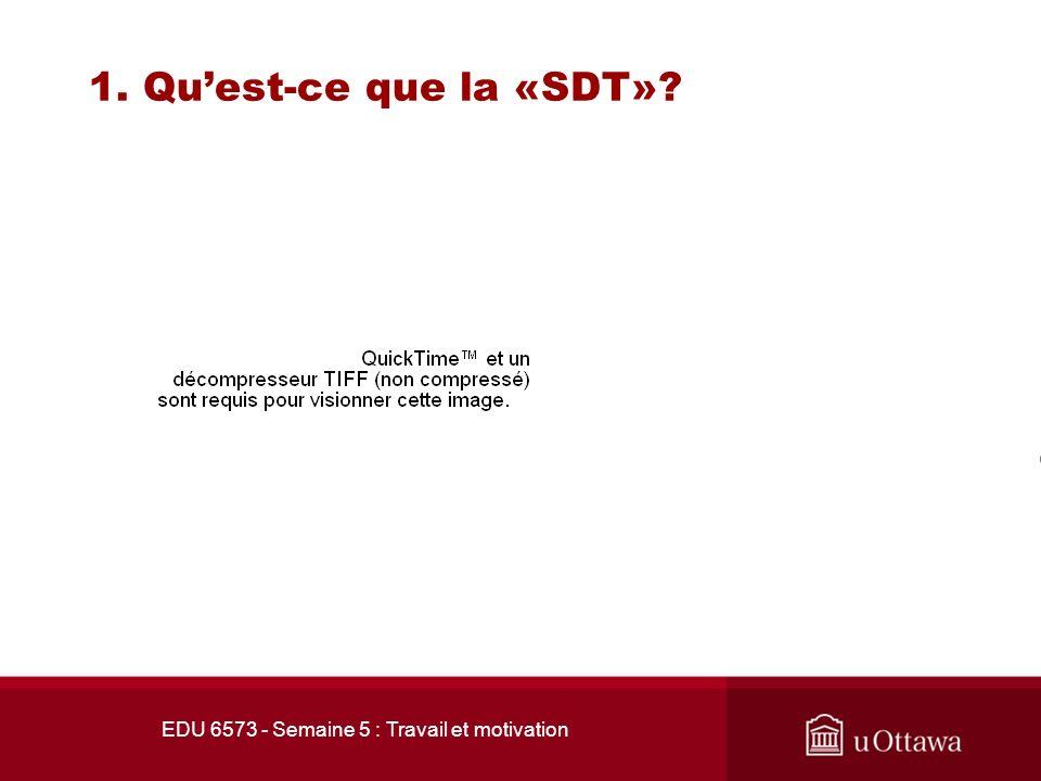 EDU 6573 - Semaine 5 : Travail et motivation 1. Quest-ce que la «SDT»?