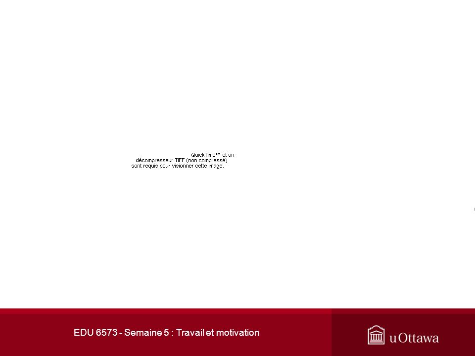 EDU 6573 - Semaine 5 : Travail et motivation 1.Quest-ce que la «SDT».