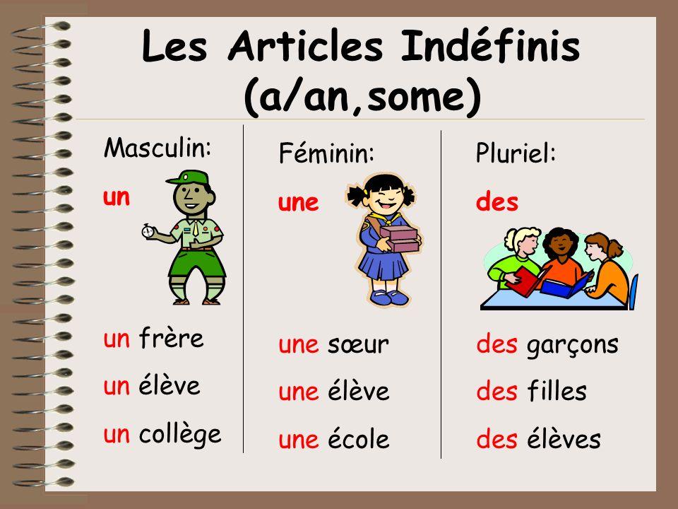 Les Articles Indéfinis (a/an,some) Masculin: un un frère un élève un collège Féminin: une une sœur une élève une école Pluriel: des des garçons des fi
