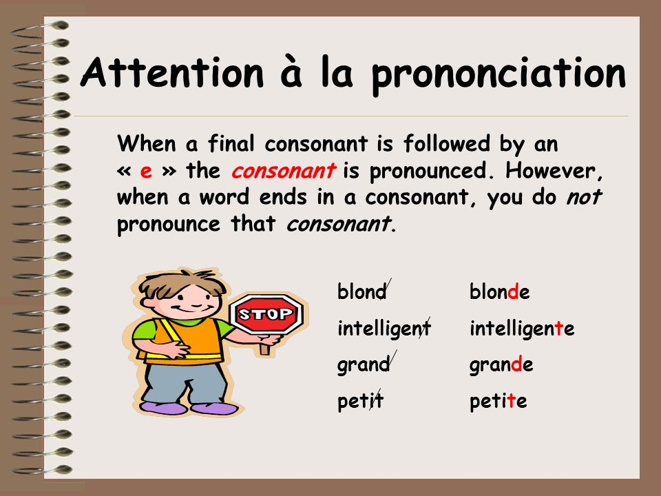 Attention à la prononciation When a final consonant is followed by an « e » the consonant is pronounced. However, when a word ends in a consonant, you