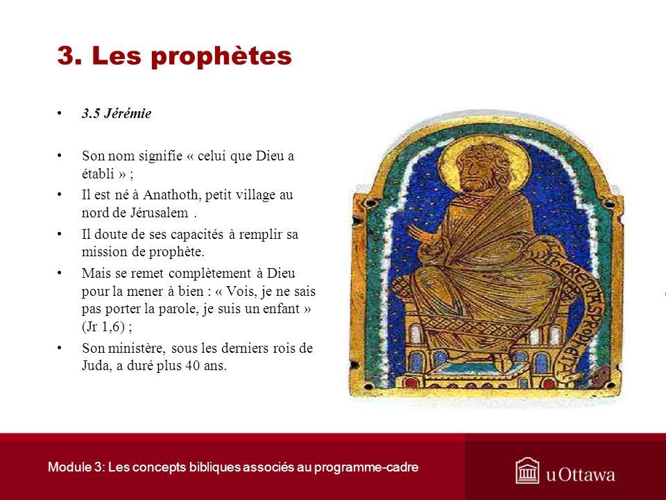 Module 3: Les concepts bibliques associés au programme-cadre 3. Les prophètes 3.4 Amos Il dénonce: Le manque de justice dans le royaume. Le mauvais tr