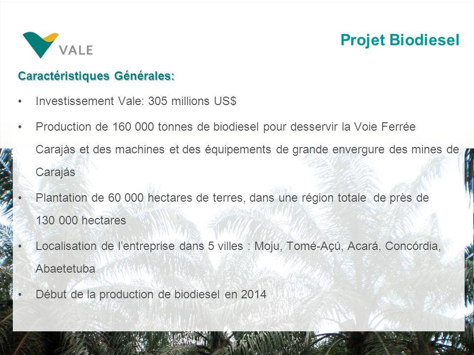 Projet Biodiesel Caractéristiques Générales: Investissement Vale: 305 millions US$ Production de 160 000 tonnes de biodiesel pour desservir la Voie Ferrée Carajàs et des machines et des équipements de grande envergure des mines de Carajás Plantation de 60 000 hectares de terres, dans une région totale de près de 130 000 hectares Localisation de lentreprise dans 5 villes : Moju, Tomé-Açú, Acará, Concórdia, Abaetetuba Début de la production de biodiesel en 2014