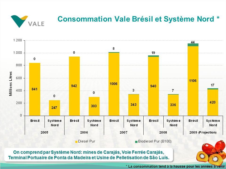 Consommation Vale Brésil et Système Nord * On comprend par Système Nord: mines de Carajás, Voie Ferrée Carajás, Terminal Portuaire de Ponta da Madeira et Usine de Pelletisation de São Luís.