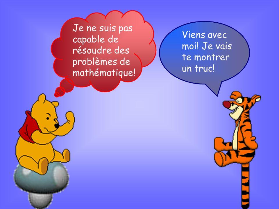 Je ne suis pas capable de résoudre des problèmes de mathématique.