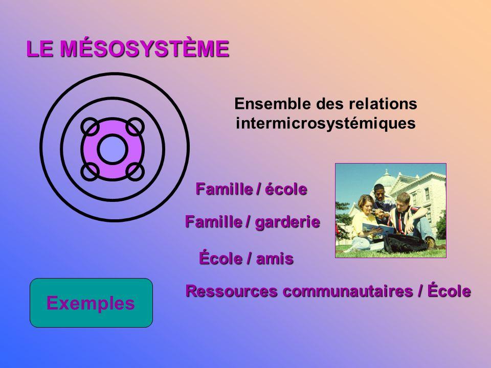 LE MICROSYSTÈME Endroit assidûment fréquenté par la personne qui y expérimente des activités, des rôles, des interactions. Exemples La maisonnée Lécol
