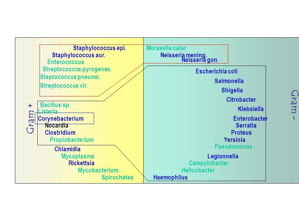 Bibliographie CPS: Compendium des produits et spécialités pharmaceutiques MICROMEDEX.