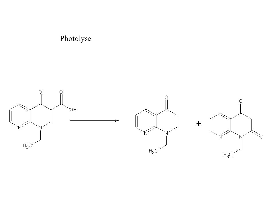 ADN girase (sous-unité de liaison) ADN girase sous-unité catalytique 4 fluoroquinolones empilées