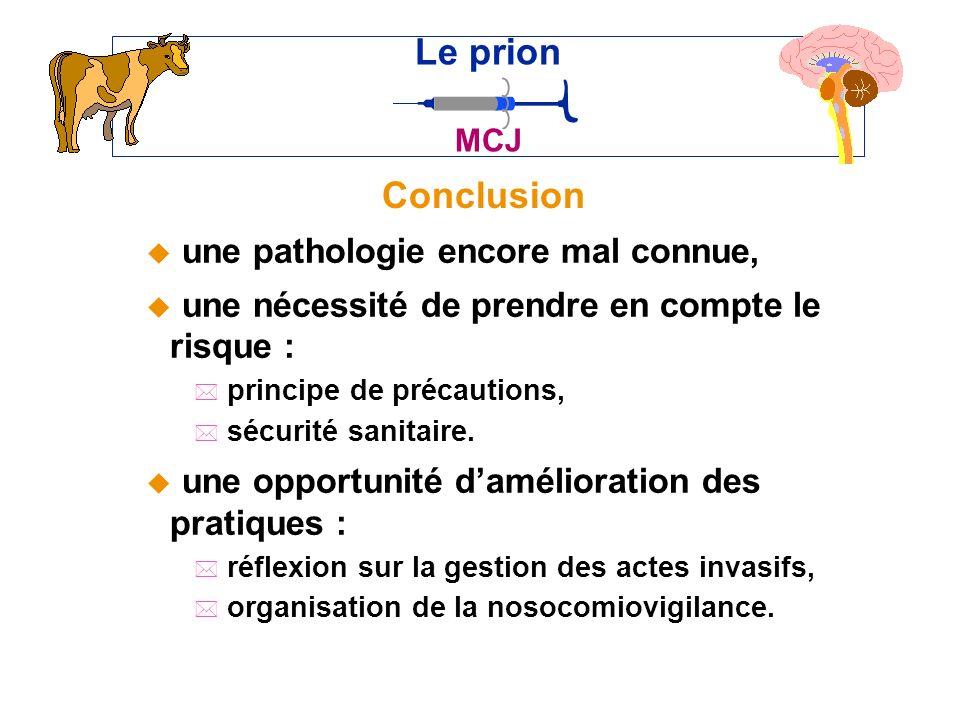 Conclusion Le prion MCJ u une pathologie encore mal connue, u une nécessité de prendre en compte le risque : * principe de précautions, * sécurité sanitaire.