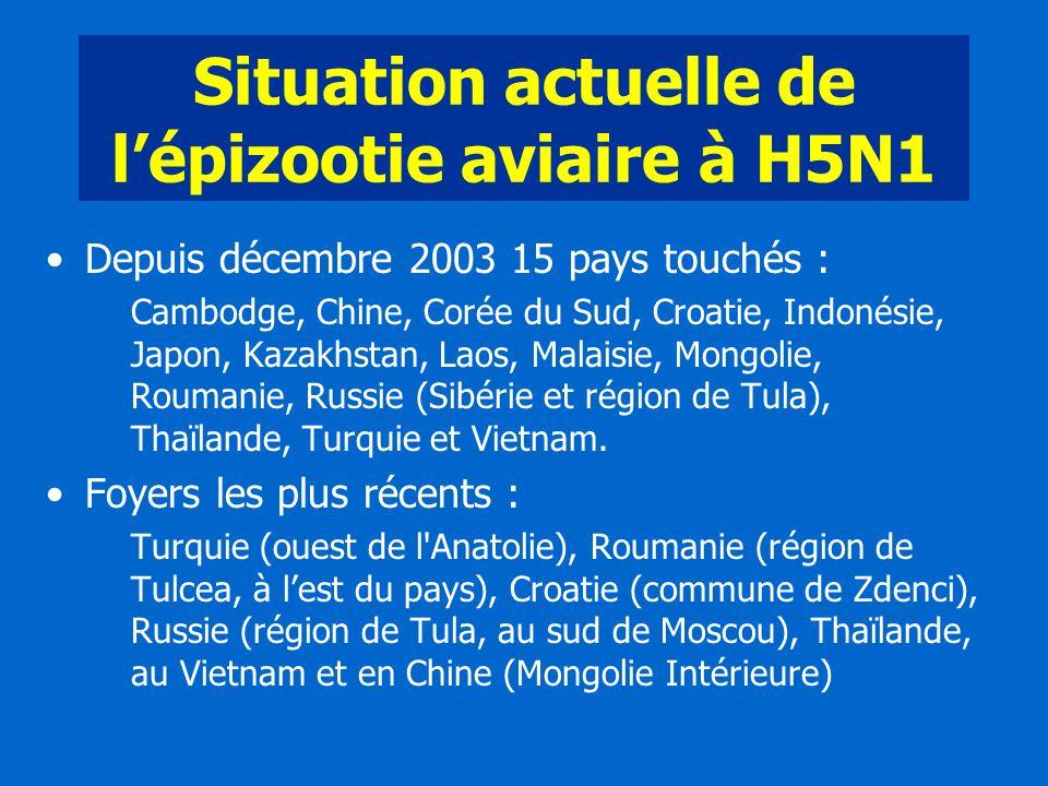 Situation actuelle de lépizootie aviaire à H5N1 Depuis décembre 2003 15 pays touchés : Cambodge, Chine, Corée du Sud, Croatie, Indonésie, Japon, Kazak