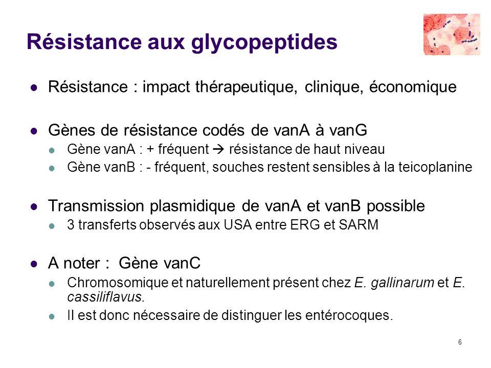6 Résistance aux glycopeptides Résistance : impact thérapeutique, clinique, économique Gènes de résistance codés de vanA à vanG Gène vanA : + fréquent