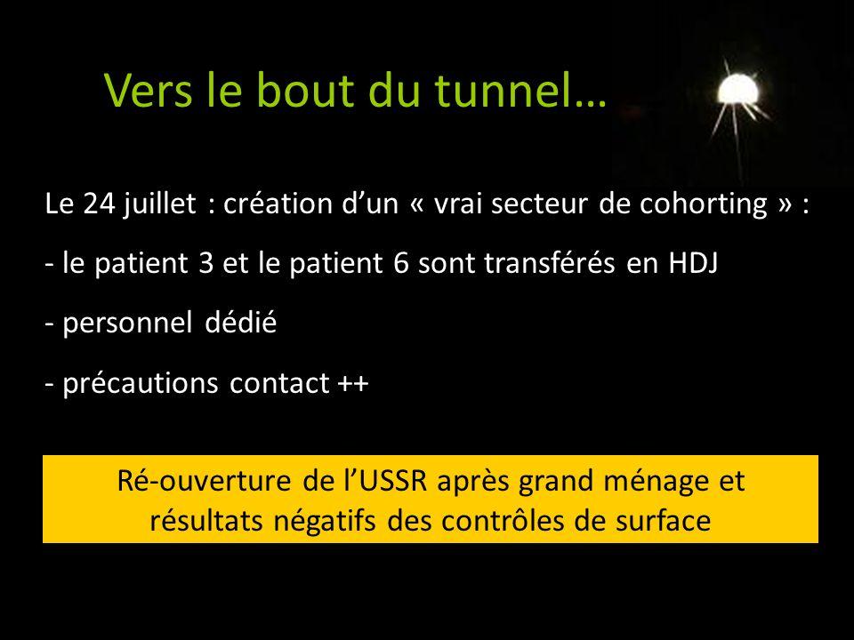 Vers le bout du tunnel… Le 24 juillet : création dun « vrai secteur de cohorting » : - le patient 3 et le patient 6 sont transférés en HDJ - personnel
