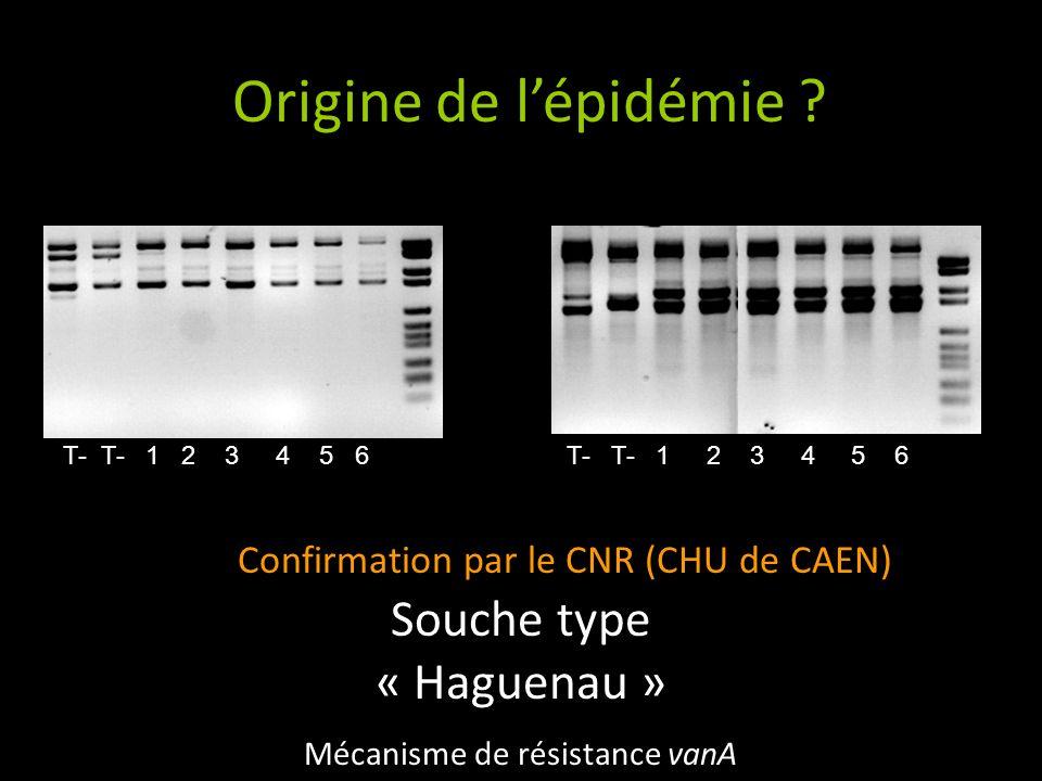 Origine de lépidémie ? BK4AP4 1 2 3 4 5 6 7 8 M 1 2 3 4 5 6 7 8 M Confirmation par le CNR (CHU de CAEN) Souche type « Haguenau » Mécanisme de résistan