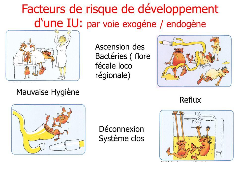 Facteurs de risque de développement dune IU: par voie exogéne / endogène UROLOGIE Mauvaise Hygiène Ascension des Bactéries ( flore fécale loco régiona