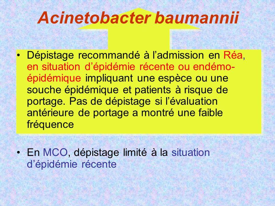 Acinetobacter baumannii Dépistage recommandé à ladmission en Réa, en situation dépidémie récente ou endémo- épidémique impliquant une espèce ou une souche épidémique et patients à risque de portage.