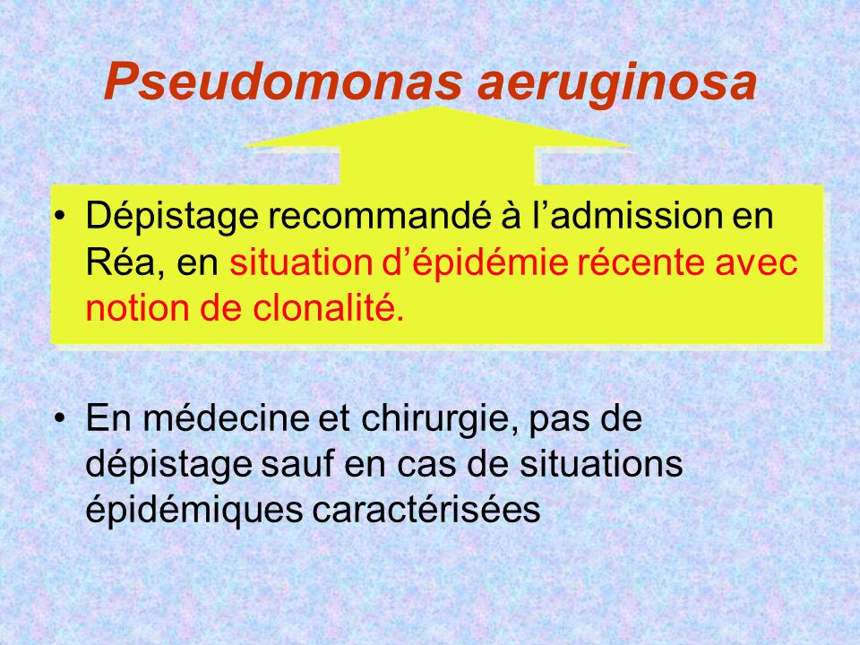 Pseudomonas aeruginosa Dépistage recommandé à ladmission en Réa, en situation dépidémie récente avec notion de clonalité.