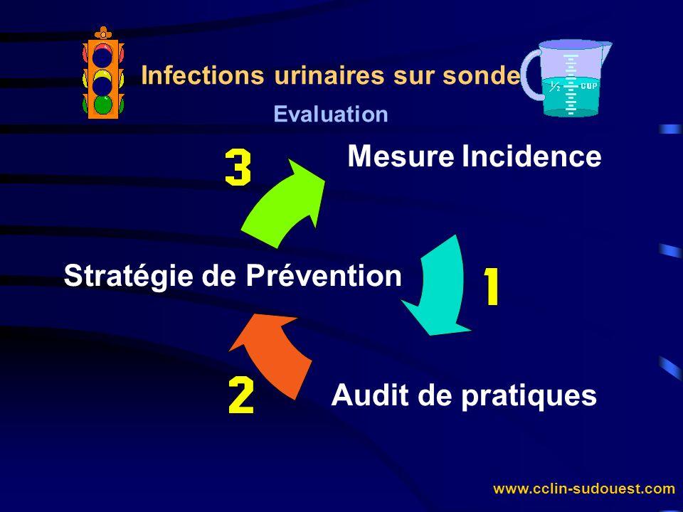 www.cclin-sudouest.com Infections urinaires sur sonde Evaluation Mesure Incidence Stratégie de Prévention Audit de pratiques