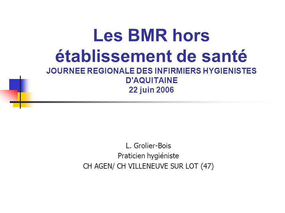 Les BMR hors établissement de santé JOURNEE REGIONALE DES INFIRMIERS HYGIENISTES D'AQUITAINE 22 juin 2006 L. Grolier-Bois Praticien hygiéniste CH AGEN