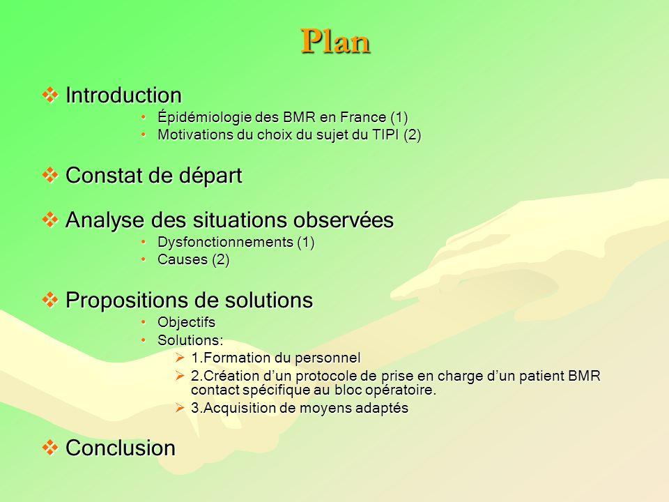 Plan Introduction Introduction Épidémiologie des BMR en France (1)Épidémiologie des BMR en France (1) Motivations du choix du sujet du TIPI (2)Motivat