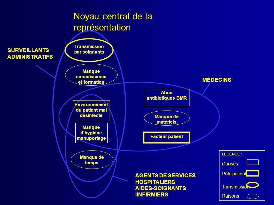 Manque d'hygiène manuportage Environnement du patient mal désinfecté Abus antibiotiques BMR Facteur patient Transmission par soignants Manque de temps