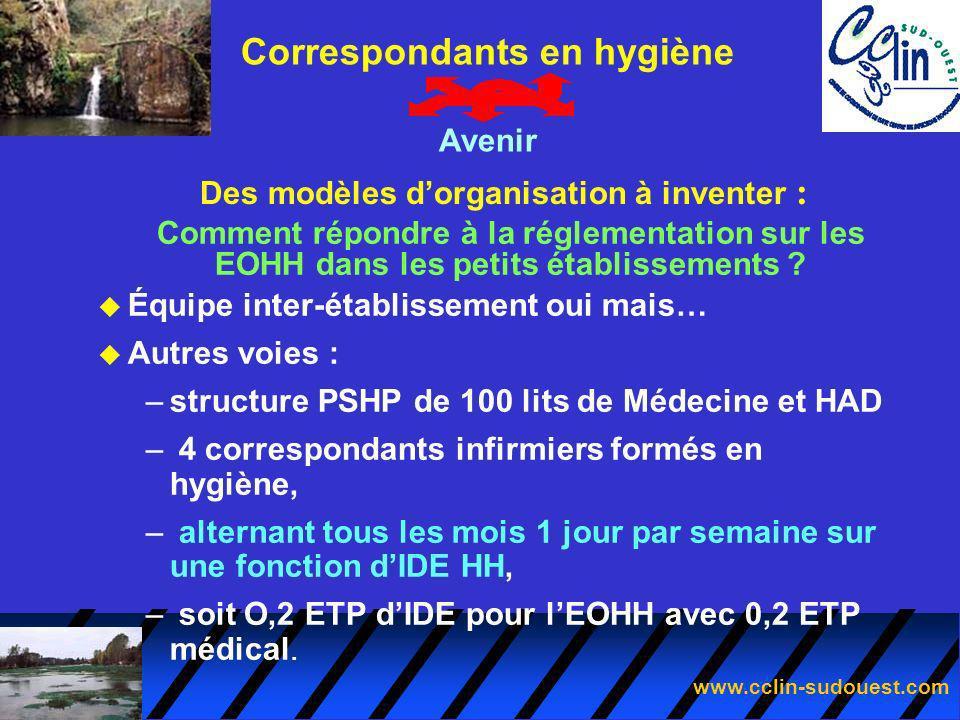 www.cclin-sudouest.com Des modèles dorganisation à inventer : Correspondants en hygiène Avenir Comment répondre à la réglementation sur les EOHH dans
