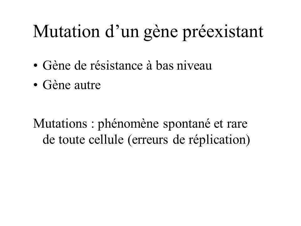 Mutation dun gène préexistant Gène de résistance à bas niveau Gène autre Mutations : phénomène spontané et rare de toute cellule (erreurs de réplicati