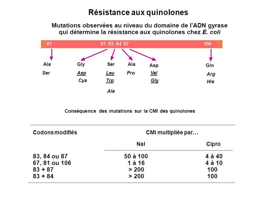 Résistance aux quinolones Codons modifiés CMI multipliée par… Nal Cipro 83, 84 ou 87 50 à 100 4 à 40 67, 81 ou 106 1 à 16 4 à 10 83 + 87 > 200 100 83