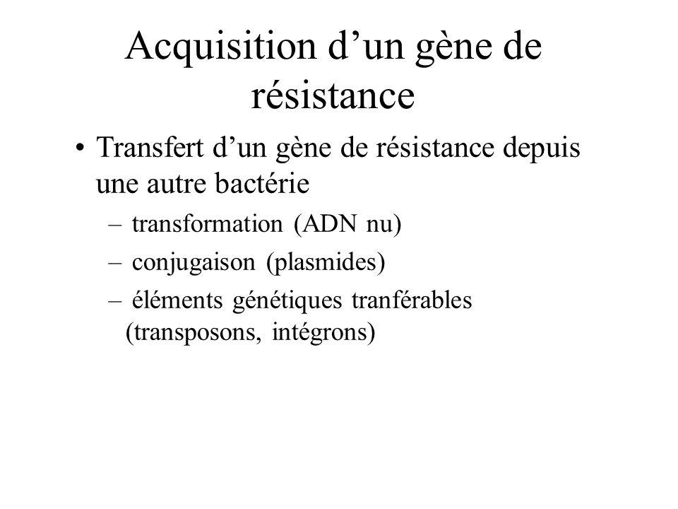 Acquisition dun gène de résistance Transfert dun gène de résistance depuis une autre bactérie – transformation (ADN nu) – conjugaison (plasmides) – él