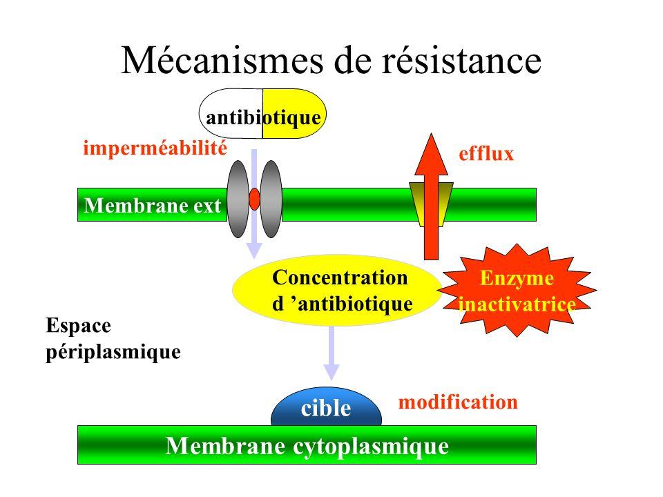 cible Mécanismes de résistance Membrane ext Membrane cytoplasmique Espace périplasmique antibiotique Concentration d antibiotique imperméabilité efflu