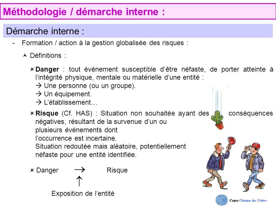 Capio Clinique des Cèdres Méthodologie / démarche interne : Démarche interne : - Formation / action à la gestion globalisée des risques : Définitions