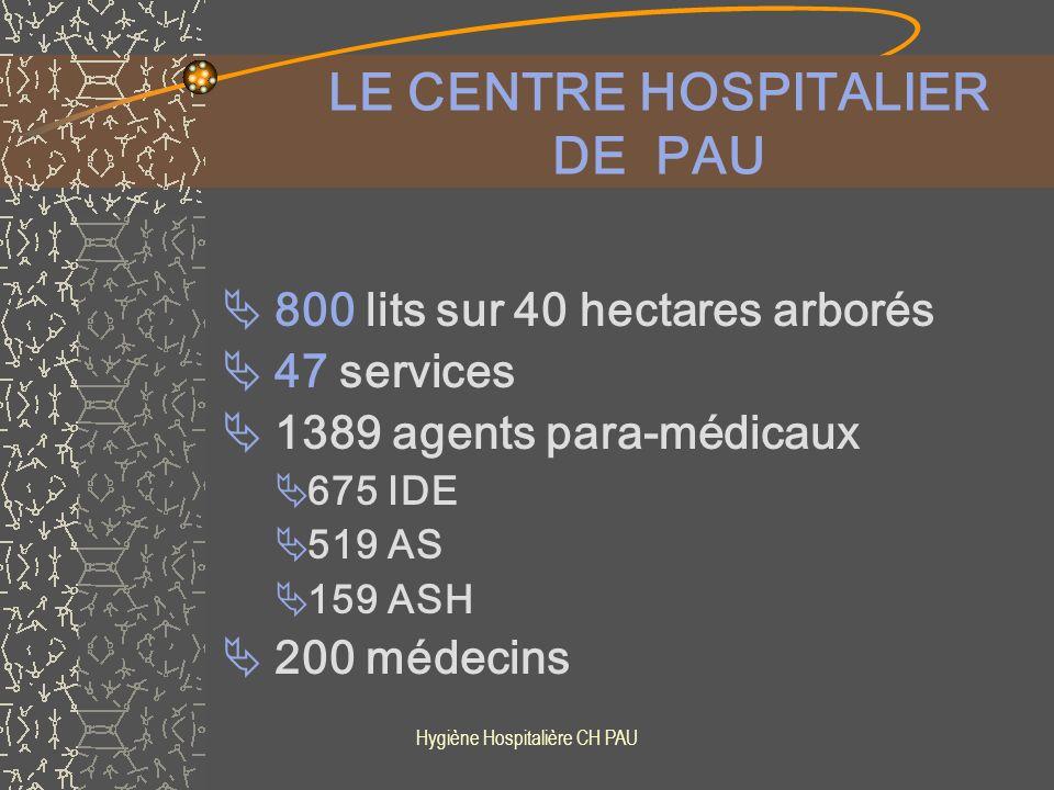 Hygiène Hospitalière CH PAU De février à mars 2008 RDV quotidien dans les US au moment des transmissions (1h30 ) Présence du cadre de santé + C.H.