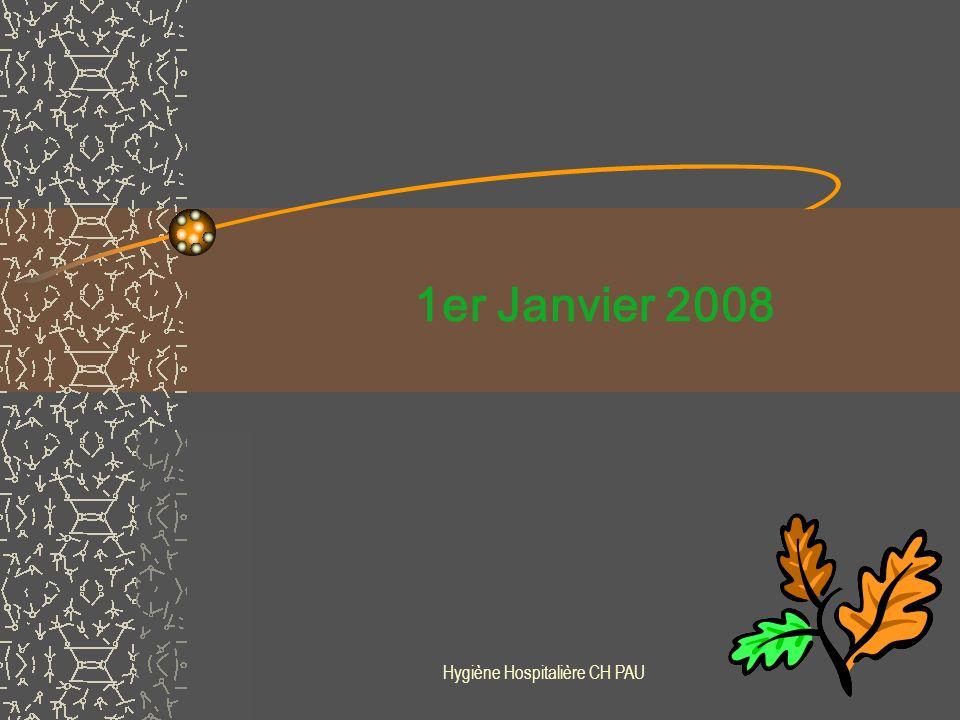 Hygiène Hospitalière CH PAU Perspectives 1er trimestre 2009 : Audit des fiches techniques réactualisées afin de mesurer La connaissance : des nouveaux modes opératoires des nouveaux produits Réajustements si besoin