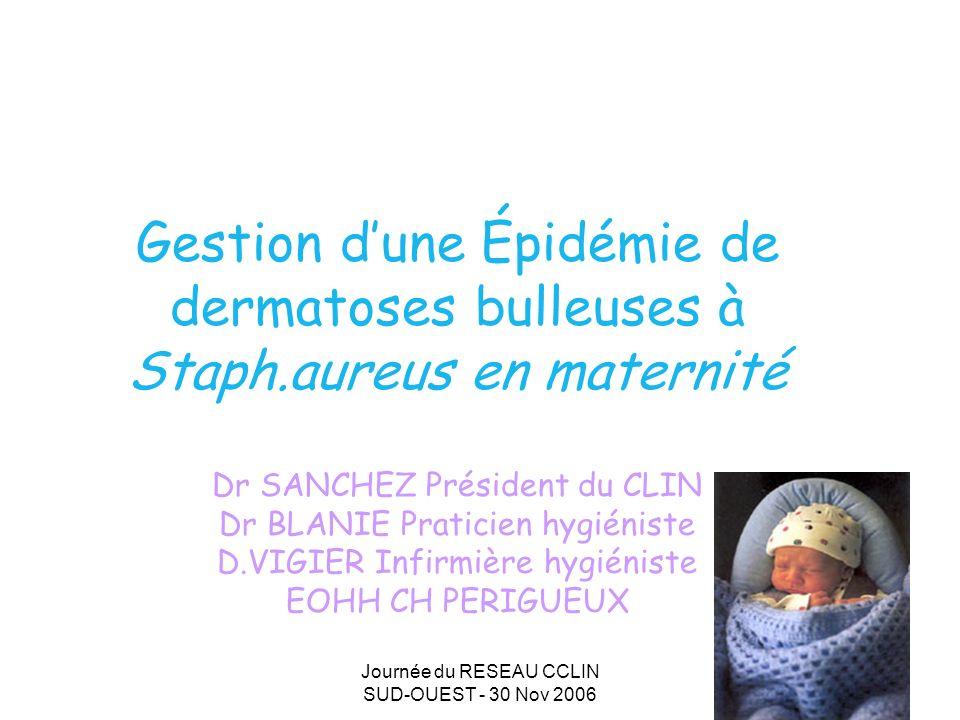 Journée du RESEAU CCLIN SUD-OUEST - 30 Nov 2006 1 Gestion dune Épidémie de dermatoses bulleuses à Staph.aureus en maternité Dr SANCHEZ Président du CLIN Dr BLANIE Praticien hygiéniste D.VIGIER Infirmière hygiéniste EOHH CH PERIGUEUX