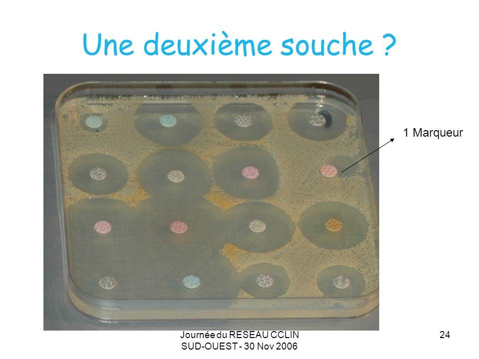 Journée du RESEAU CCLIN SUD-OUEST - 30 Nov 2006 24 Une deuxième souche ? 1 Marqueur