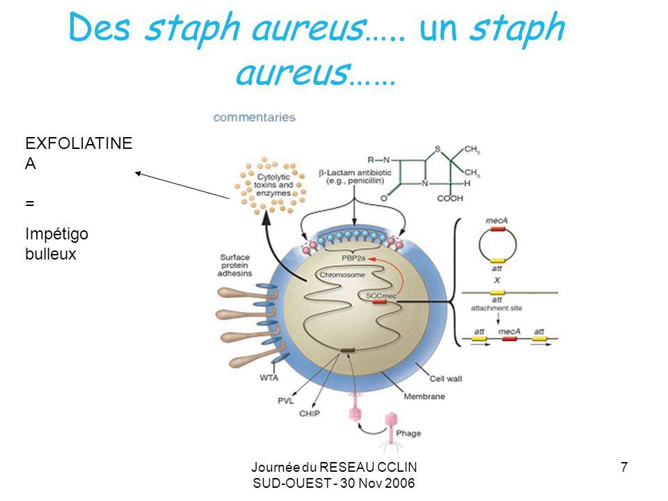 Journée du RESEAU CCLIN SUD-OUEST - 30 Nov 2006 7 Des staph aureus….. un staph aureus…… EXFOLIATINE A = Impétigo bulleux