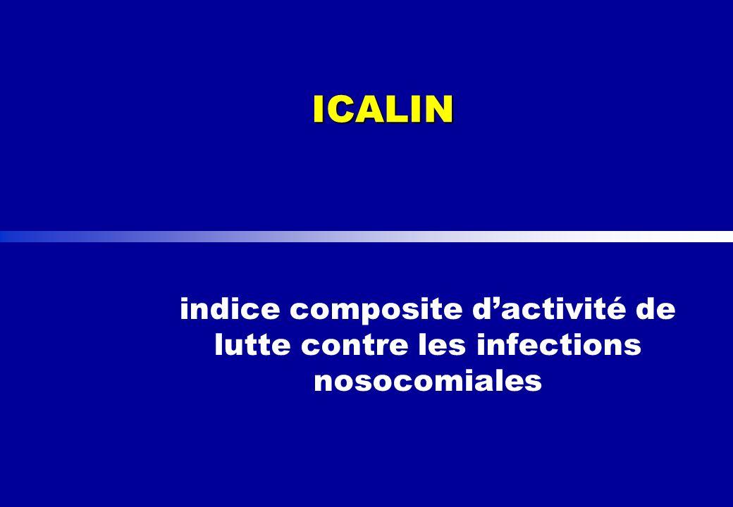 ICALIN indice composite dactivité de lutte contre les infections nosocomiales