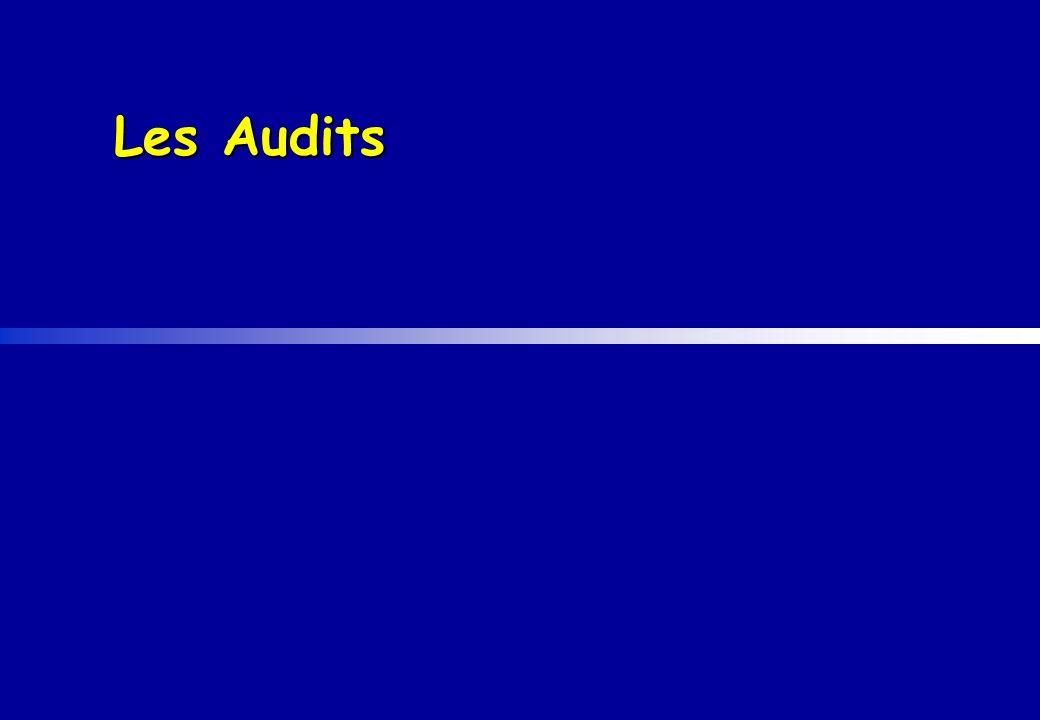 Les Audits