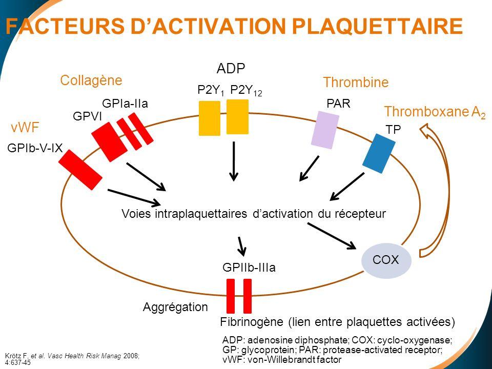 FACTEURS DACTIVATION PLAQUETTAIRE vWF Collagène Thromboxane A 2 Thrombine ADP GPIb-V-IX GPVI GPIa-IIa P2Y 1 P2Y 12 PAR TP Voies intraplaquettaires dactivation du récepteur COX Fibrinogène (lien entre plaquettes activées) GPIIb-IIIa Aggrégation Krötz F, et al.